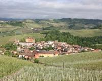 Wijn Langhe Roero1